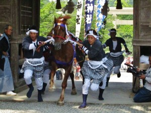 Ceremonial runners guide a galloping horse through the gates of a shrine during the Go-Ryoue festival on Dogo, in the Oki Islands.