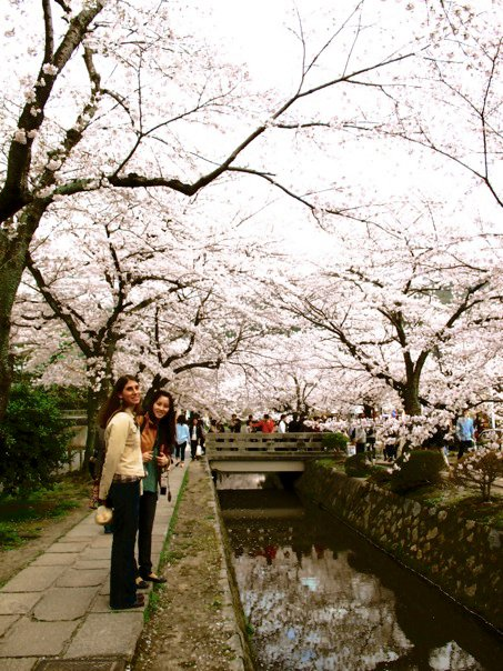 Exploring the Philosopher's Walk in Kyoto during Hanami